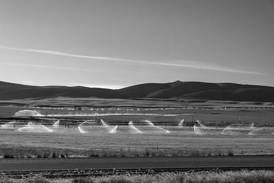 Utah Irrigation Sunrise