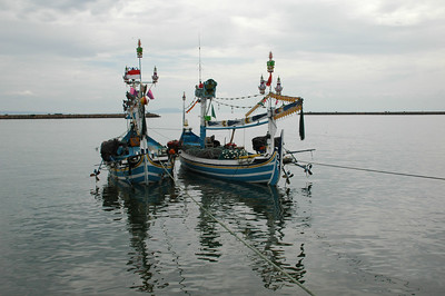 Sardine purse seine boats at the Pengambengan port, Bali.