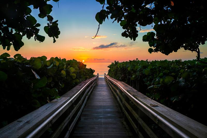 DSC06189 David Scarola PHotography, Jupiter Beaech Sunrise, Jupiter Florida, DEC 2018