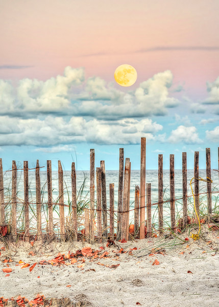 DSC0494 David Scarola Photography, Jupiter Florida Moon Rise, Dec 2018