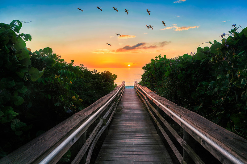 DSC06192 David Scarola Photography, Jupiter Beach Sunrise, Jupiter Florida, Dec 2018