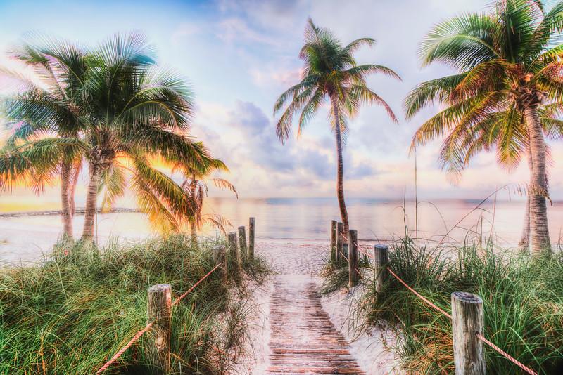 DSC09156 David scarola Photography, Dec 2017, Key West