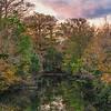 DSC00440 David Scarola Photography, Riverbend Park, DEc 2018
