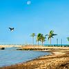 DSC08817 david Scarola Photography, Key West