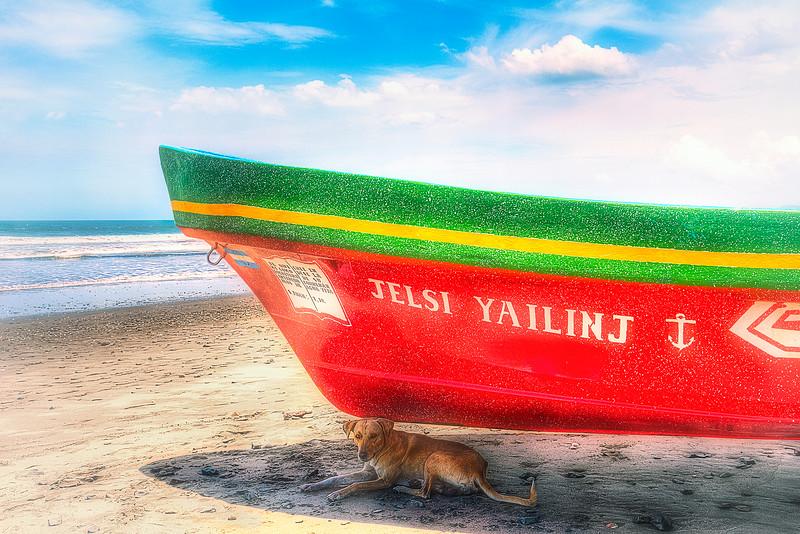 DSC07630 David Scarola Photography, Nicaragaua, Dog in Shade of Boat on Beach in Jiquilillo, sep 2017, web