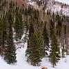 DSC00104 David Scarola Photography, Rocky Mountain National Park