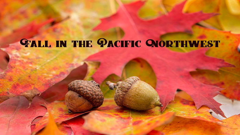 Fall in the Pacific Northwest (Slideshow)