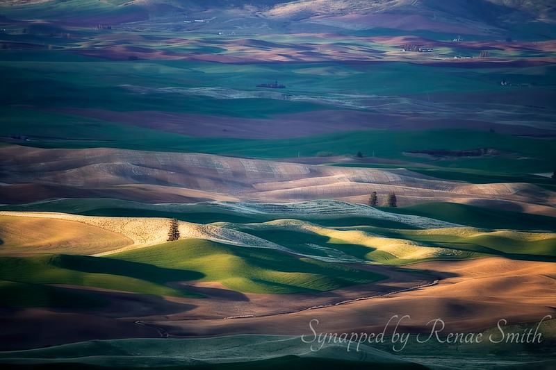 Breakthrough at Palouse Hills