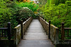 Lush Walk