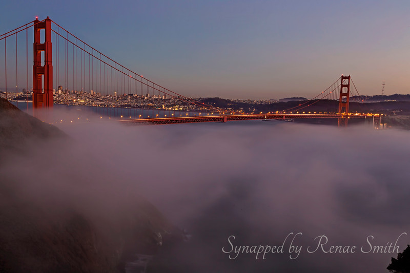 Bridging the Fog