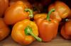 Orange Blazes
