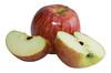 Apple Bits