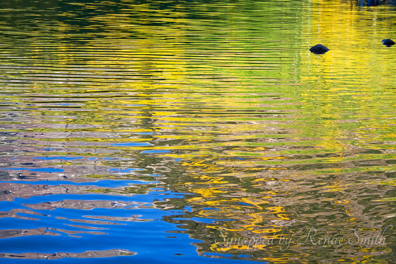 Fall colors reflected in the water
