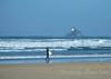 Surf the Sea