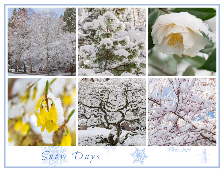 Snow Days Collage