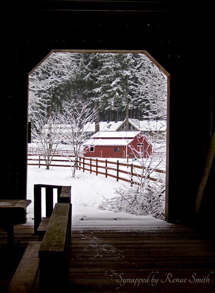 From the Shelter of the Covered Bridge