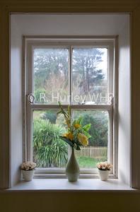 Window WHP_6975