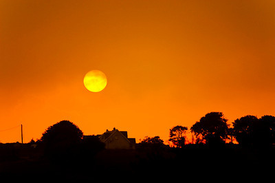 WHP_6023 Sun West Cork