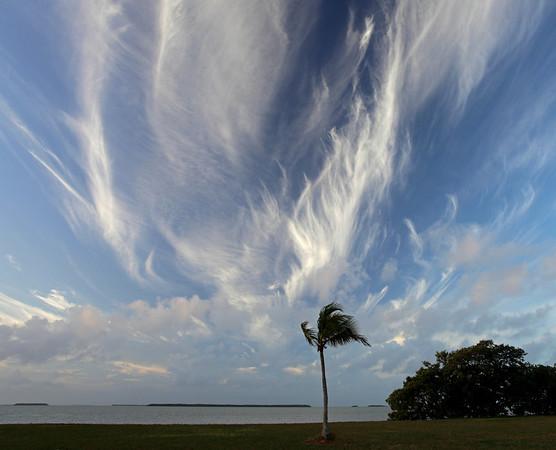 Everglades Morning Sky
