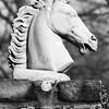 Horse_Head