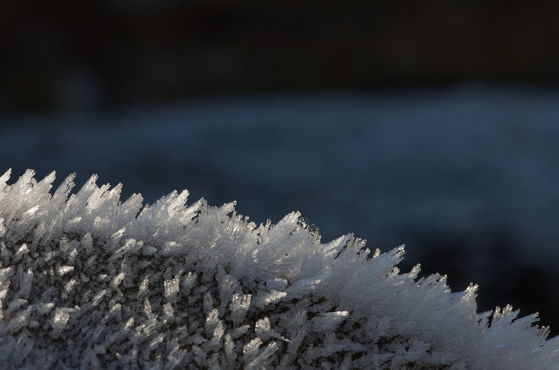 Ice crystals on a rock in the parking lot at Fishhawk Falls.