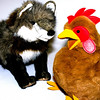 Fox and the Little Red Hen