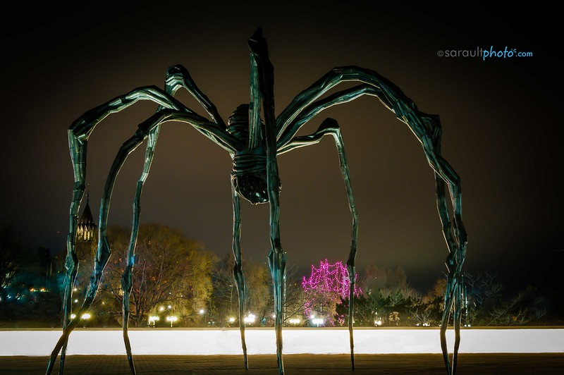 Maman Sculpture in front of the National Art Gallery  in Ottawa Canada's Capital