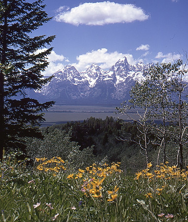 Grand Tetons From East Side of Jackson Hole Valley