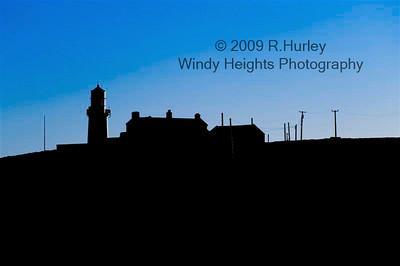 Galley Head WHP_7308 (Medium)