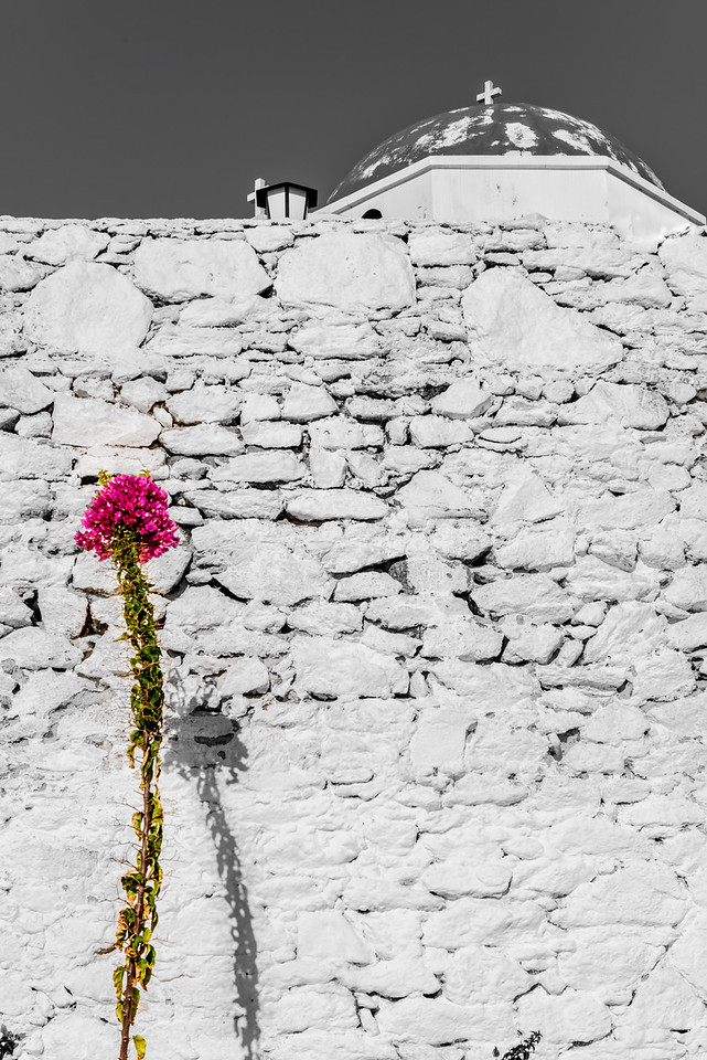 Mykonos Flower Wall