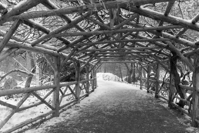 New York Central Park wooden frame bridge in winter Jan 2011.
