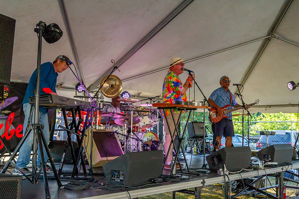 Bill Brown and the King Bees at the Beer Garden, Festival Saturday 2018