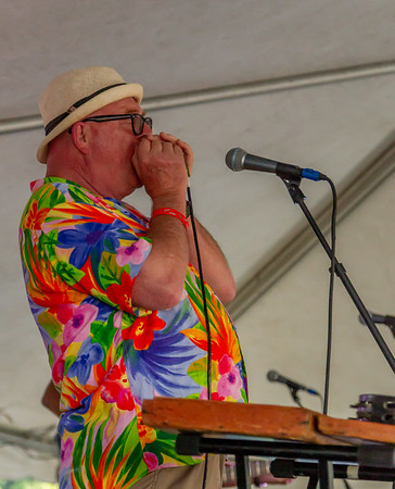 Set one: Bill Brown and the King Bees at the Beer Garden, Festival Saturday 2018