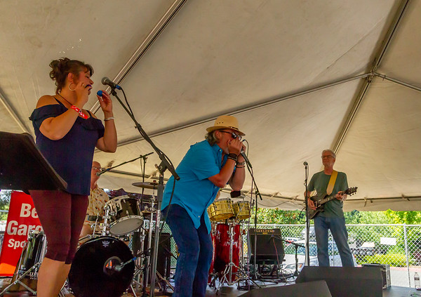 One Nitestand at the Beer Garden Festival Saturday 2018