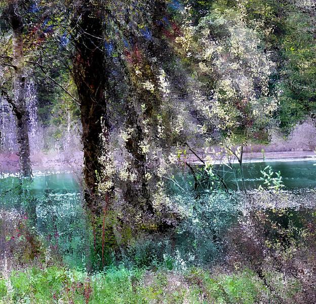 Fisher Pond, Vashon