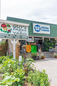 Guy's Farm and Yard