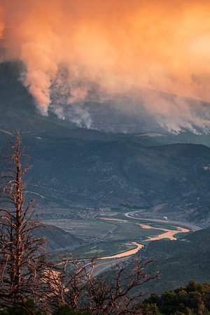 The Grizzly Creek Fire (2020)