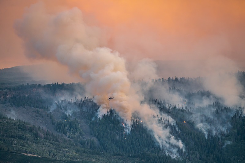 Grizzly Gulch Fire (2020)