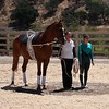 65A California Gold 1* Compulsories with Lompoc Vaulters 3H3 Peggy Van Hook, 4K9 Desiree Clark, Walter