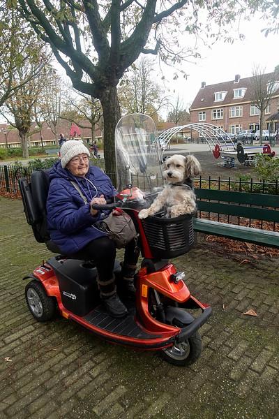 Nederland, Amsterdam, van der Pekbuurt, Amsterdam Noord, mevrouw Joke Hoogerbeets en haar hondje Zwabber, foto: Katrien Mulder