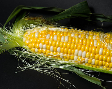 corn3922