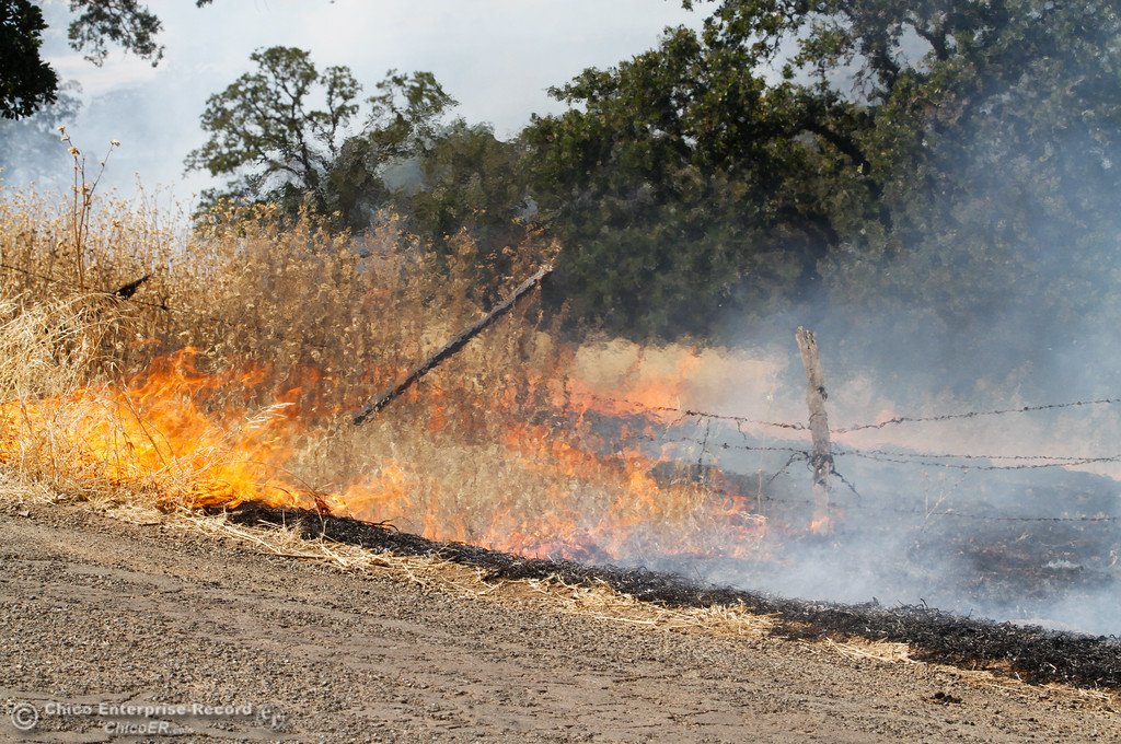 . A vegetation fire burns between Humboldt Road and Highway 32 Wednesday July 19, 2017  in Chico, California.  (Emily Bertolino -- Enterprise-Record)