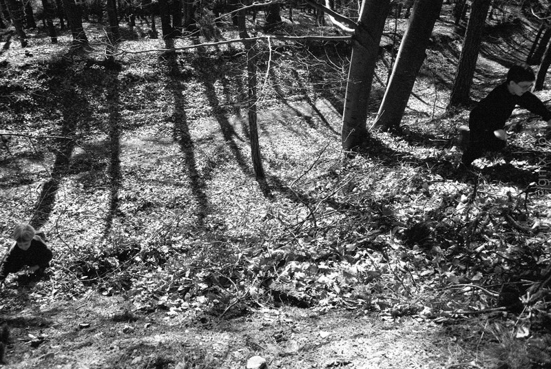1994-03 076 sw.jpg