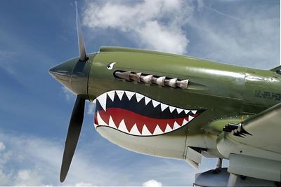 P 40 Flying Tiger 0441