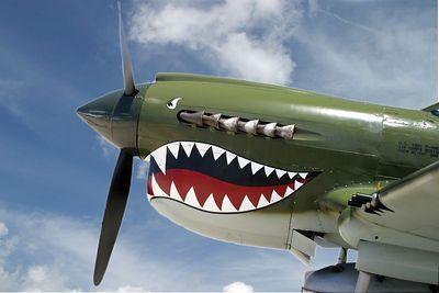 P 40 Flying Tiger 0441