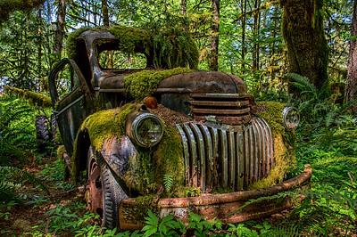 Abandoned #1