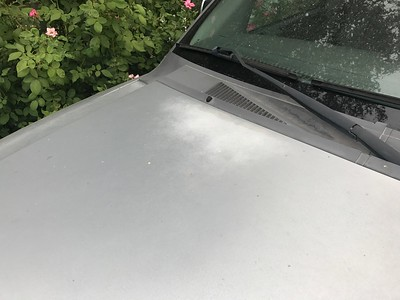 Silver paint on hood and roof is faded out