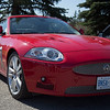 Ontario Jaguar Owners Association<br /> 2013 Spring Blossom Run