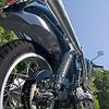 Triumph Thruxton 900 - back view