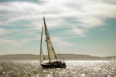 sailing in San Francisco bay.